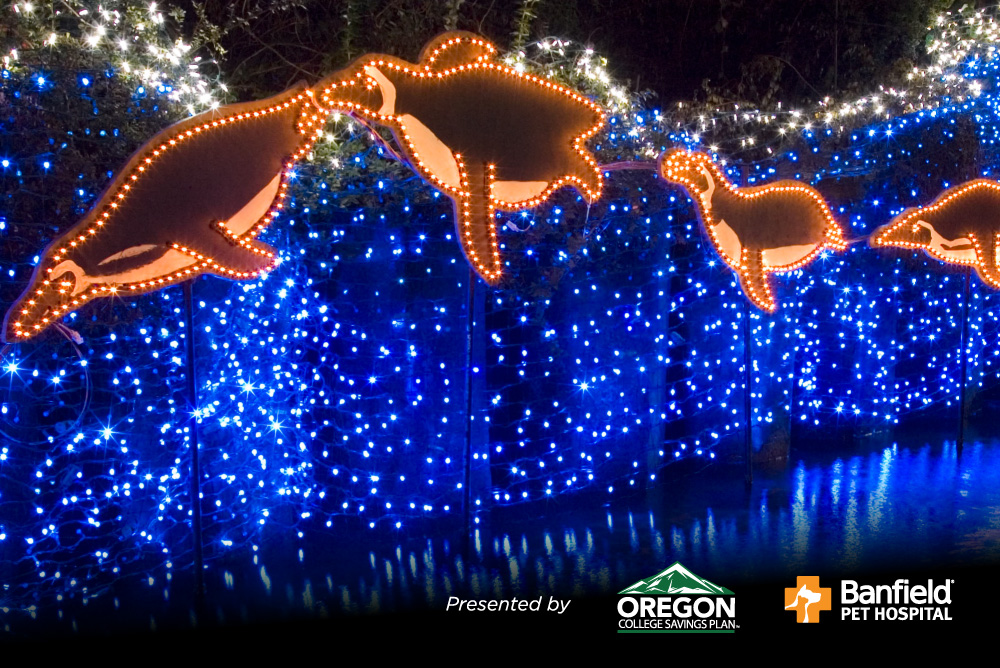 & ZooLights food and beverage | Oregon Zoo azcodes.com