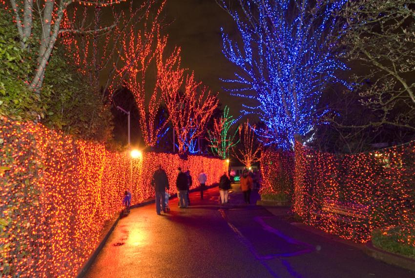 Sold out: BrewLights - Sold Out: BrewLights Oregon Zoo