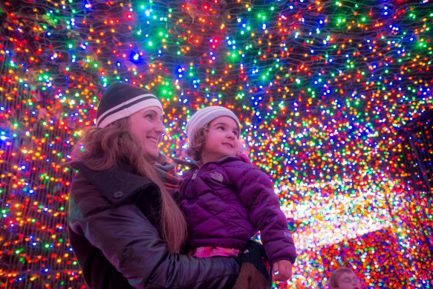 Enjoy ZooLights on Value Nights at a reduced price. - ZooLights Value Night Oregon Zoo