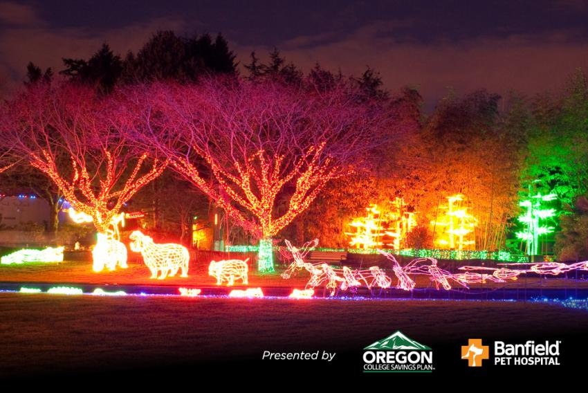 It wouldn't be the holidays in Portland without a visit to the Oregon Zoo's  annual winter festival ZooLights. As you walk around the zoo, ... - ZooLights Oregon Zoo