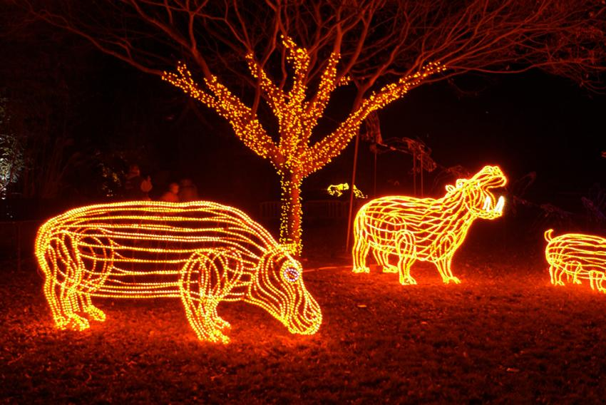It wouldn't be the holidays in Portland without a visit to ZooLights. - ZooLights Oregon Zoo