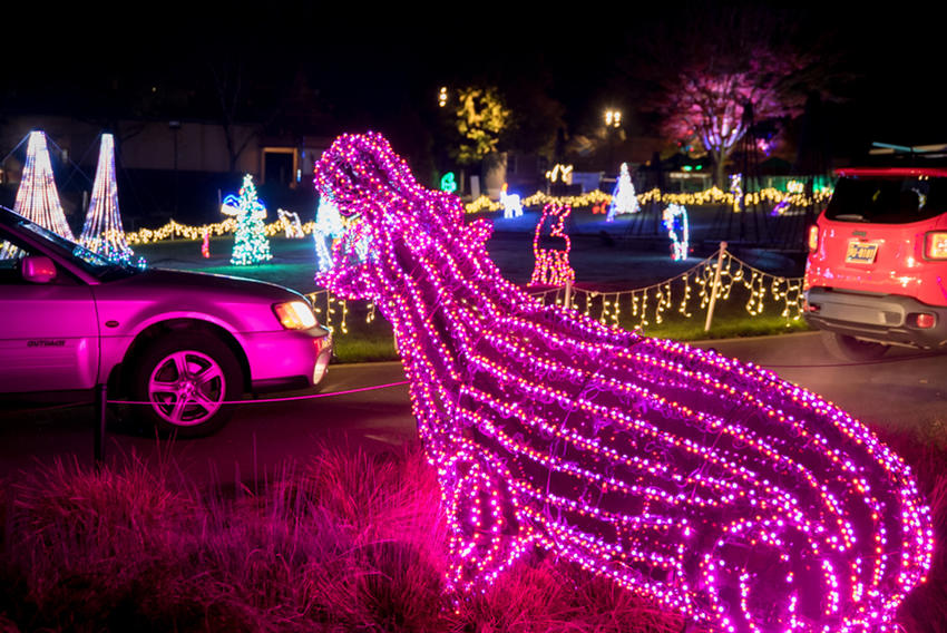 Christmas Events Portland Or 2021 Zoolights Is On Display Will Open As A Drive Thru Experience Oregon Zoo