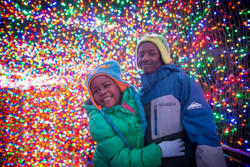 It wouldn't be the holidays in Portland without a visit to the Oregon Zoo's  annual winter festival, ZooLights. As you walk around the zoo, ... - ZooLights Oregon Zoo