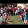 Rabbit Romp: Video news release