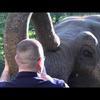 Elephant Lands Campaign